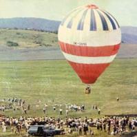 16-1983 medlanky